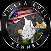 Vilela Bull Kennel
